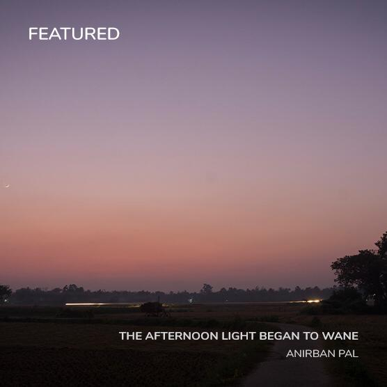 the-afternoon-light-began-to-wane